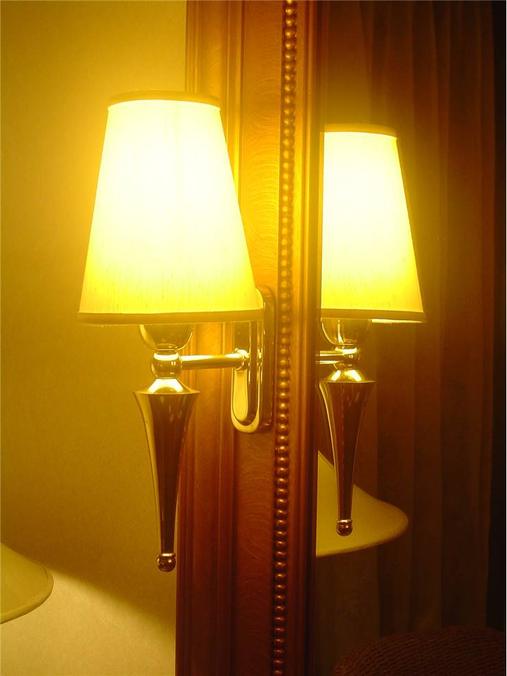Old Electric Lamp